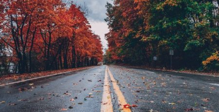 What Are the 4 Seasons of Personal Injury?